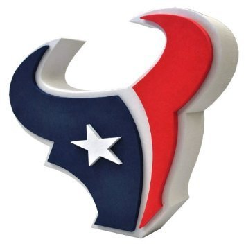 Houston Texans Fan Foam